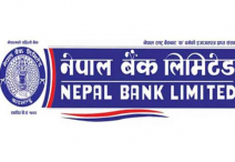 नेपाल बैंकले यस वर्ष १७ प्रतिशत लाभांश वितरण गर्ने