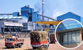 सरकार चिनी उद्योगीको 'चक्रब्यूह' मा पर्दा मारमा साल्ट ट्रेडिङ