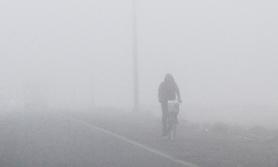 तराई हुस्सुले ढाक्यो, जाडोबाट बच्न मौसमविदको अनुरोध
