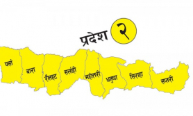 प्रदेश २ मा २९ नयाँ सङ्क्रमित थपिए, कुल संक्रमित एक हजार ४१५ पुगे