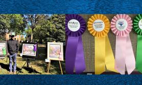 अमेरिकामा नेपाली मूलका राजेन्द्रले जिते ४ वटा चित्रकला प्रतियोगिता
