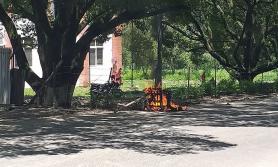 नेविसंघ कार्यकर्ताले त्रिवि उपकुलपतिको कुर्सी जलाए