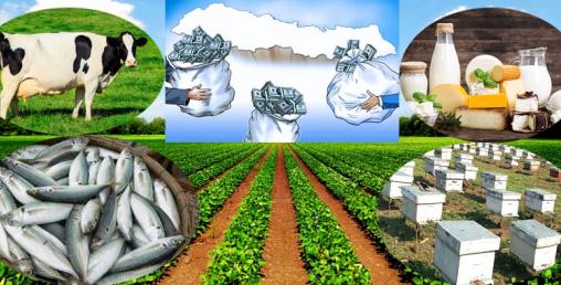 यसकारण ल्याउन हुँदैन कृषि क्षेत्रमा प्रत्यक्ष वैदेशिक लगानी