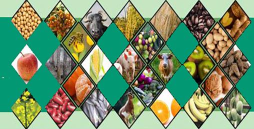 प्रधानमन्त्री कृषि आधुनिक परियोजनामा कनिका छराइ, पालिकालाई एक लाखमात्र