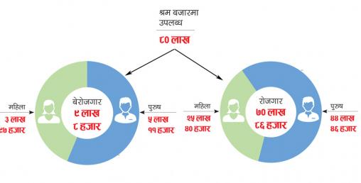 ९ लाख नेपाली बेरोजगार, पाँच लाख ११ हजार पुरुष र तीन लाख ९७ हजार महिलाले काम पाएनन