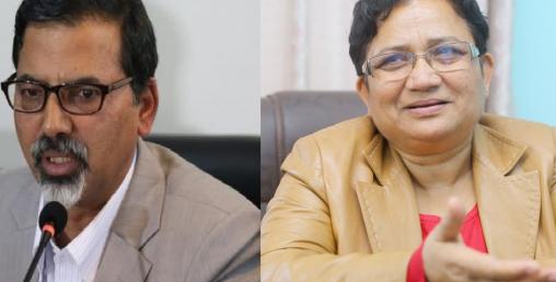 अर्थमन्त्रीमा जनार्दन शर्मा, उर्जामा पम्फा भुसाल