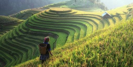 भारतमा कृषि संरचनाका लागि एक लाख करोडको प्याकेज घोषणा