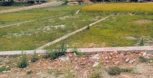 कसैले पनि सरकारी जग्गामा आँखा लगाउन पाउँदैन, २६४ बिघा जमीन बदर