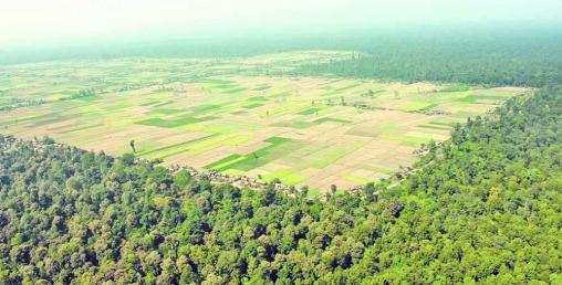 निजगढ विमानस्थल निर्माण फेरि विवादमा