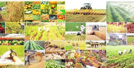 करोड लागतमा कृषि फार्म