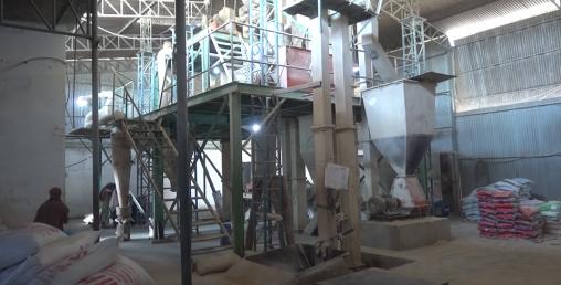 शङ्करपुरमा दाना उद्योग निर्माण